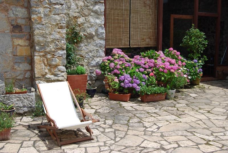 patio hortensias villandas 1