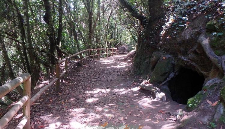 EN COCHE POR TENERIFE-Las Lagunetas