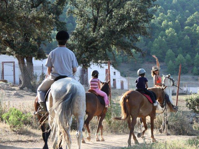 phoca thumb l caballos contadero 11