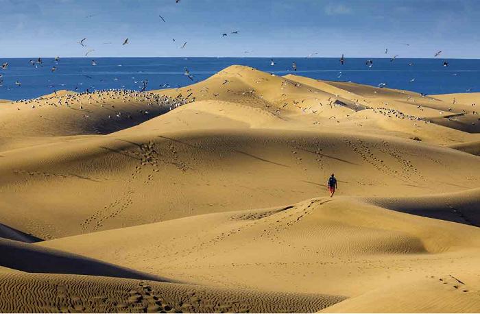 TURISMO ISLAS CANARIAS-Gran Canaria