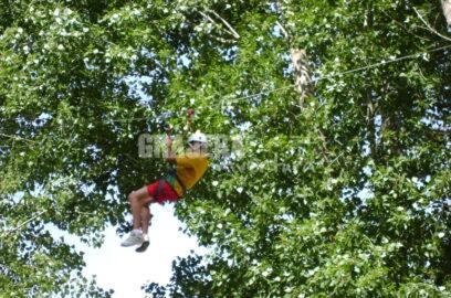 Aventura en los árboles 1