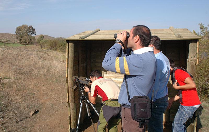 observacion aves isla zujar