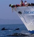 Gente en proa Jackelin con calderones