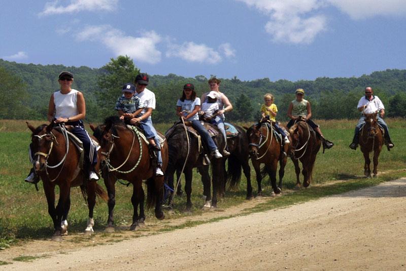 cavall3