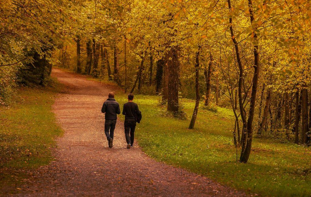 beneficios de practicar senderismo